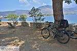 Galaxidi Fokida - Centraal Griekenland foto 5 - Foto van De Griekse Gids