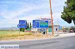 Bij Thiva Viotia Centraal Griekenland - Foto 3 - Foto van De Griekse Gids