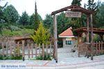 Grotten Agios Georgios | Kilkis Macedonie | Griekenland 0 - Foto van De Griekse Gids