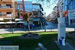 Giannitsa | Pella Macedonie | Griekenland foto 3 - Foto van De Griekse Gids