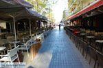Giannitsa | Pella Macedonie | Griekenland foto 12 - Foto van De Griekse Gids