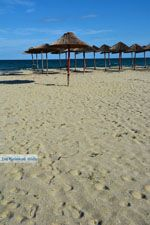 Stranden Pieria | Olympische Riviera | Macedonie foto 22 - Foto van De Griekse Gids