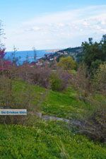 GriechenlandWeb De  kust Platamonas und Neoi Poroi | Pieria Macedonie | Foto 1 - Foto GriechenlandWeb.de