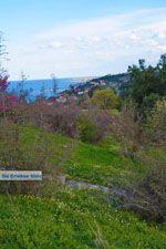 GriechenlandWeb.de De  kust Platamonas und Neoi Poroi | Pieria Macedonie | Foto 1 - Foto GriechenlandWeb.de