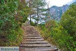 Nationaal Park van Olympus bij Litochoro | Pieria Macedonie | Foto 5 - Foto van De Griekse Gids