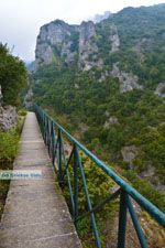 Nationaal Park van Olympus bij Litochoro | Pieria Macedonie | Foto 9 - Foto van De Griekse Gids