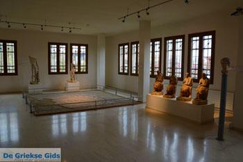 Museum Dion | Pieria Macedonie | Griekenland  foto 15 - Foto van De Griekse Gids