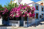 GriechenlandWeb.de Nimborio Chalki - Insel Chalki Dodekanes - Foto 128 - Foto GriechenlandWeb.de