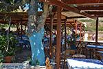 Pontamos Chalki - Eiland Chalki Dodecanese - Foto 179 - Foto van De Griekse Gids