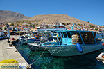 GriechenlandWeb.de Nimborio Chalki - Insel Chalki Dodekanes - Foto 211 - Foto GriechenlandWeb.de