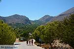 Pontamos Chalki - Eiland Chalki Dodecanese - Foto 240 - Foto van De Griekse Gids