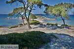 Vourvourou Chalkidiki - Macedonie -  Foto 14 - Foto van De Griekse Gids