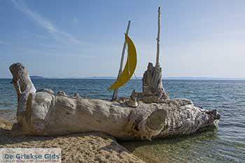 Elia Chalkidiki - De Griekse Gids Foto 1 - Foto van De Griekse Gids