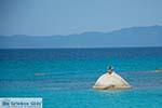 GriechenlandWeb.de Kavourotrypes Chalkidiki - GriechenlandWeb.de foto 8 - Foto GriechenlandWeb.de