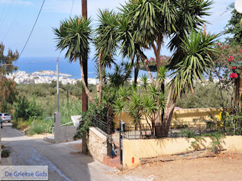 Koutouloufari Kreta (Crete) Photo 22