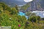 Paleokastritsa Corfu 0114 - Foto van De Griekse Gids