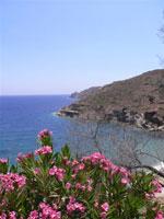 GriechenlandWeb.de Uitzicht over de baai   Insel Ios   GriechenlandWeb.de - Foto N.E. van Wageningen