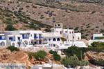 Alopronia, de haven van Sikinos | Griekenland | De Griekse Gids - foto 12 - Foto van De Griekse Gids