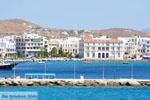 GriechenlandWeb Tinos | Griechenland | GriechenlandWeb.de - foto 22 - Foto GriechenlandWeb.de