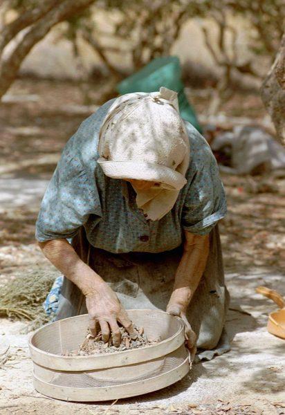 Chios - Oude dame platteland -  Foto van Ad van Gool.