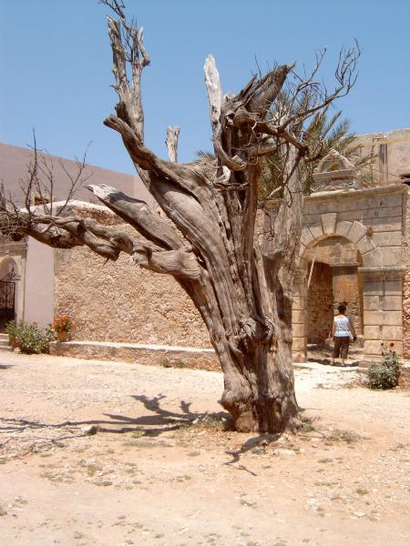 Moni Tzagarolou  (Kreta)  Foto van W.de Bree.
