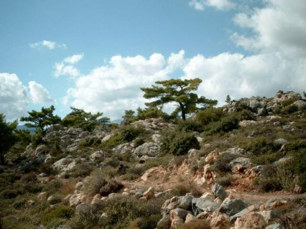 Kreta natuur