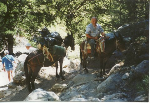 EHBO-ezel in de Samariakloof, Kreta