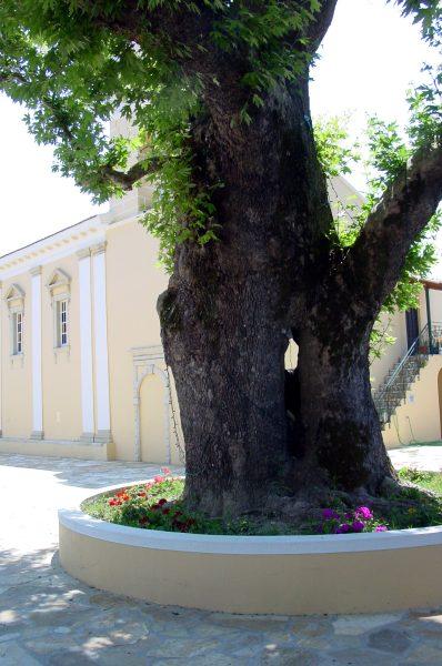 Corfu, Lefkimi