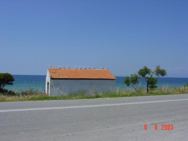 Langs de weg aan de zee van Thassos