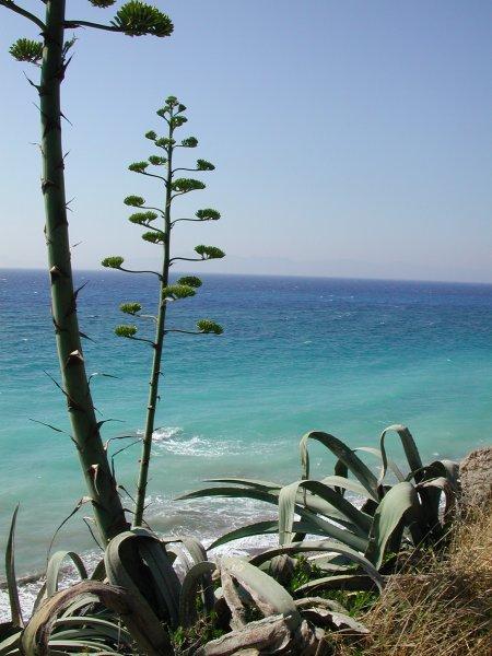 Mooie zee Rhodos