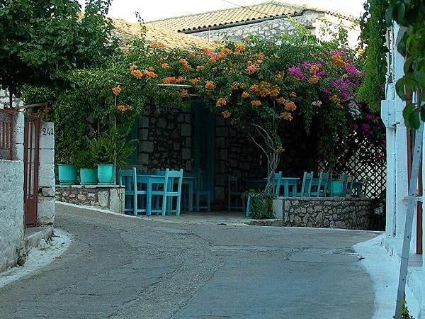 Lokale bar Spartochori Meganisi (eiland bij Lefkas)