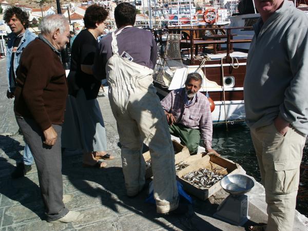 Vis te koop, Samos stad