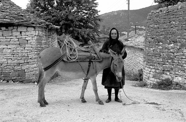 Ano Pedina Zagoria, Epirus