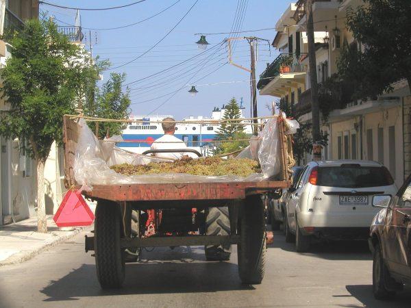 Zakynthos, vervoer van druiven. Foto van Richard & Ynske