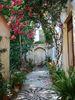 Garden - Foto van Cor