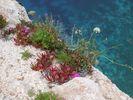 View near Keri rocks - Zakynthos - Foto van lionis