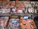 Lekkere verse vis - Foto van chris