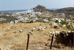 made on Skyros island - Foto van kouzolos