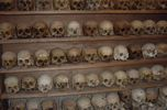 Like the Killing Fields - Foto piwa