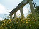 Voorjaar op historische bodem 2 - Foto van piwa
