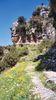Vikos gorge 1 - Foto van Anne