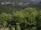 Epirus - Zagoria region - Foto Peter DE RIJCKER