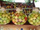 Fruit - Foto van griekenland