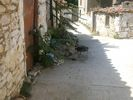 Limnos: potje koken in Atsiki - Foto van lenie de leeuw