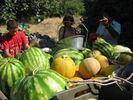 GriechenlandWeb.de   - Foto pasmannetje