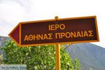 GriechenlandWeb.de Delphi (Delfi) | Griechenland | GriechenlandWeb.de foto 14 - Foto GriechenlandWeb.de