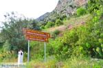 Delphi (Delfi) | Griekenland | De Griekse Gids foto 24 - Foto van De Griekse Gids