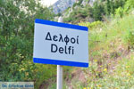 Delphi (Delfi) | Griekenland | De Griekse Gids foto 26 - Foto van De Griekse Gids