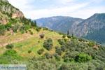 Delphi (Delfi) | Griekenland | De Griekse Gids foto 27 - Foto van De Griekse Gids
