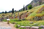 GriechenlandWeb Delphi (Delfi) | Griechenland | GriechenlandWeb.de foto 31 - Foto GriechenlandWeb.de